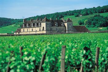 Château du Clos de Vougeot - 2