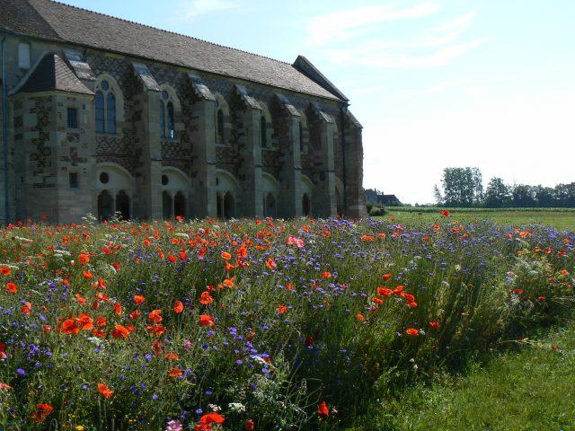Abbaye de Cîteaux - 2
