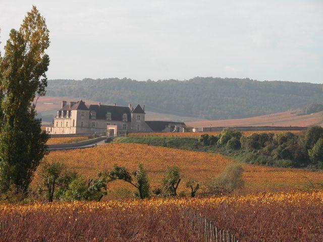 Hôtel de Vougeot - 12