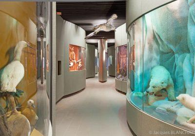 Jardin des Sciences – Muséum - 3