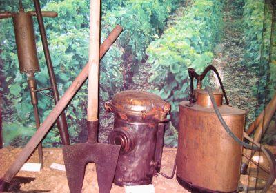 Pressoirs des ducs de Bourgogne - 3