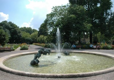 Jardin des sciences & Biodiversité – Jardin botanique - 5