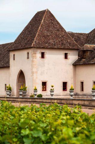 Dégustation commentée au Château de Marsannay - 3