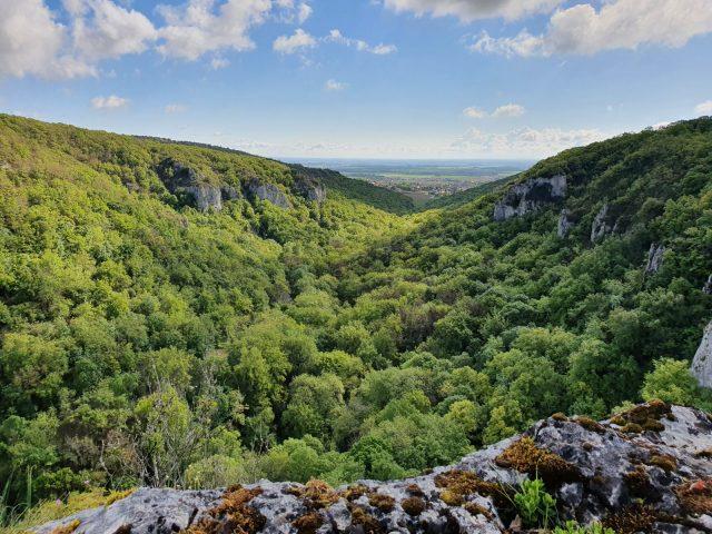 Réserve Naturelle de la Combe Lavaux – Jean Roland - 12