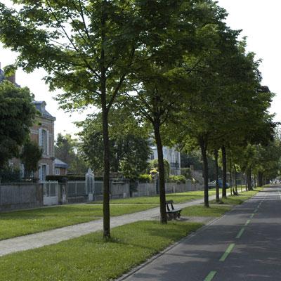 Cours-du-Parc