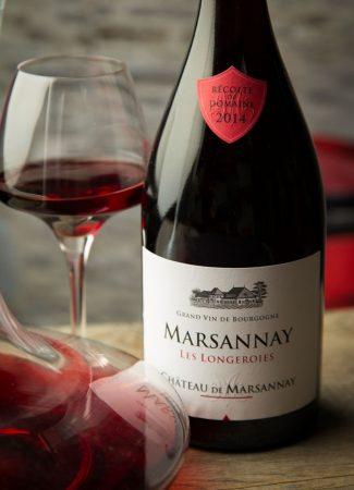 Wine tasting at Château de Marsannay