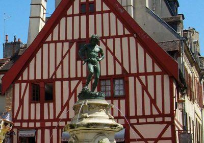 Dijon, terre des vins - 0