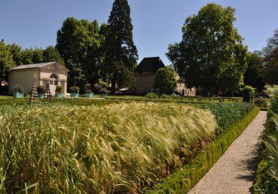Jardin des sciences & Biodiversité – Jardin botanique - 2