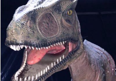 Le Monde des Dinosaures - 0