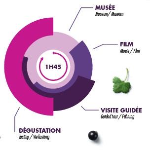 Le Cassissium - 0