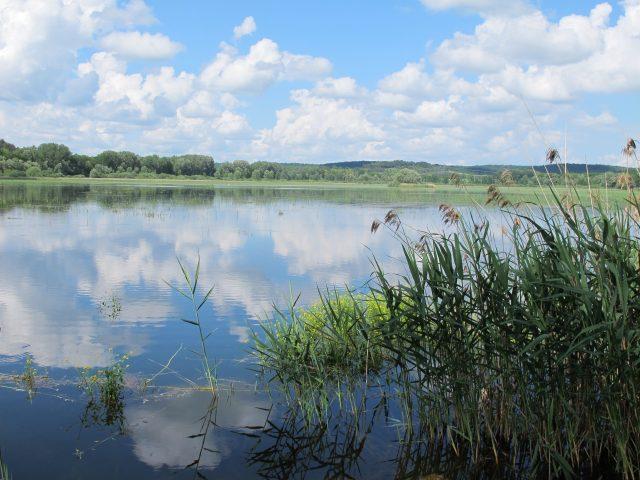 paysage-marcenay-G-DOUCET-CENB2