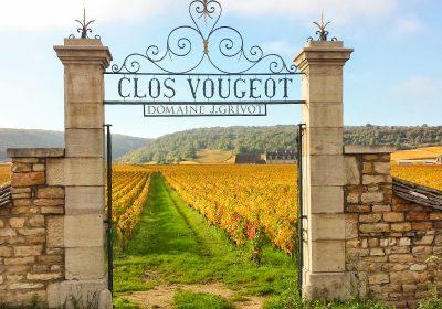 Château Vélo Vino en Côte de Nuits - 4